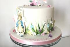 Benjamin Bunny Cake